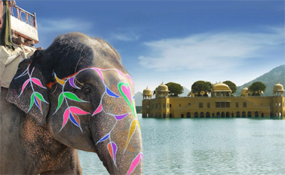 A colorful elephant with Jal Mahal Water Palace in the background