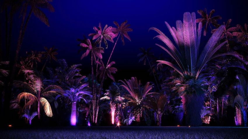 NightGarden, Miami © Kilburn Media