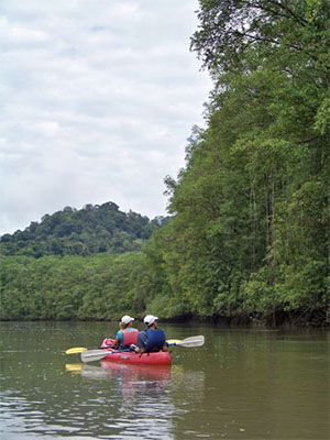 A kayaking excursion