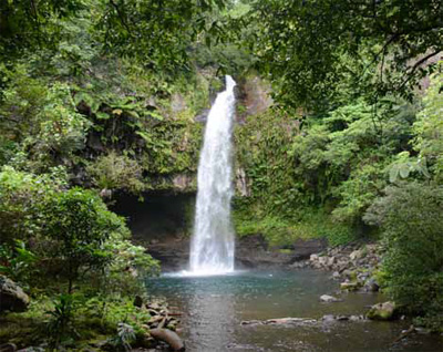 A waterfall in the rainforest of Taveuni