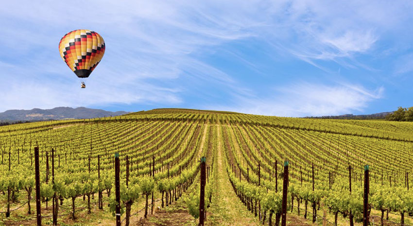 Hot air balloon over wine country in Napa Valley