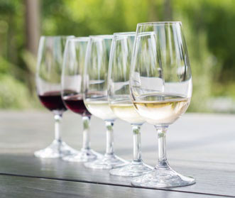 A wine tasting flight
