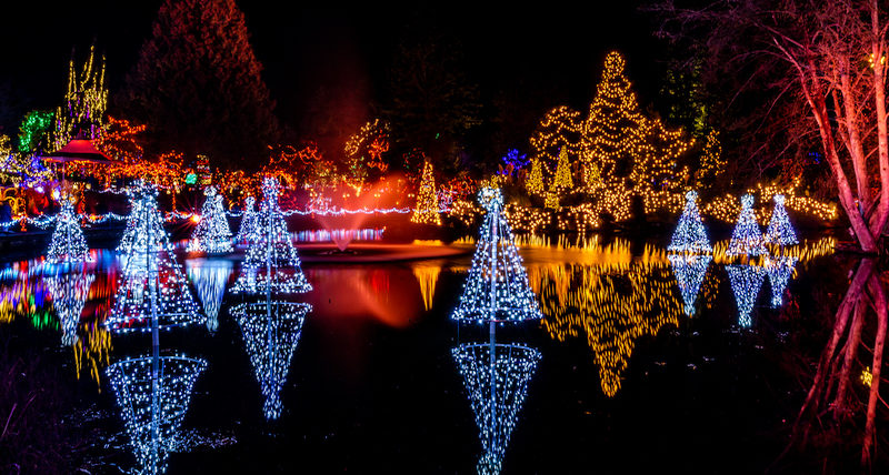 The Vancouver Festival of Lights at VanDusen Botanical Garden